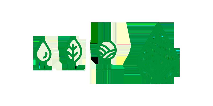 LOGO设计灵感来源:水滴、田园、茶叶